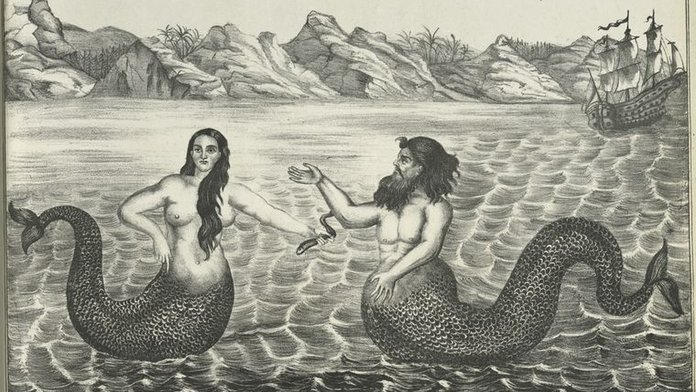 Mermaids (Merfolks)