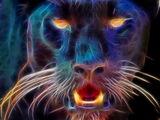 Black Beast of Exmoor
