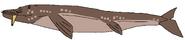 Ponchofirewalker's Wal-o-whale
