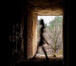 Shadow-people (1).jpg