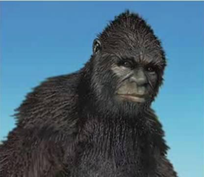 Bigfoot analysis clip image032.jpg
