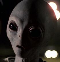 Grey Alien X-Files