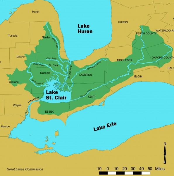 Lake St. Clair Serpent