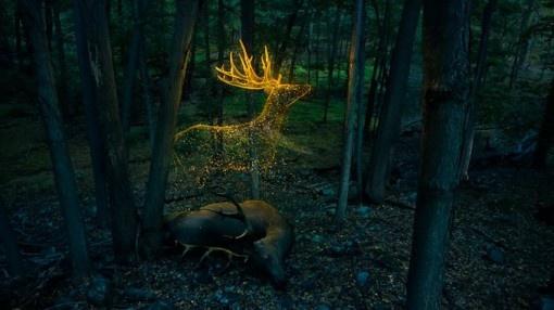 Ghost Deer