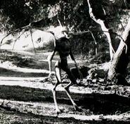 The Black Goat-Man of Wittingau