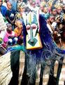 Festivalbaboon