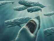 Megalodon-out-of-blue