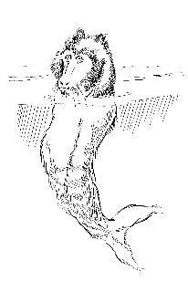 Steller's Sea Ape