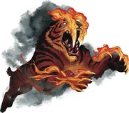 Flaming Ennedi Tiger (Crypid)