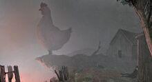 Pollo maligno-0.jpg