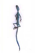 Bluetail