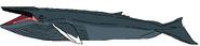 Bloop Whale