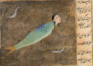 Nasnas-fish
