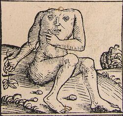 636px-Nuremberg chronicles - Strange People - Headless (XIIr).jpg