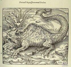 Mythology-or-Fantasy-Poisson-nomme-Orobon.jpg