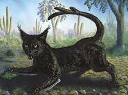 Cactus Cat, William Rebsamen