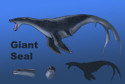 Giant seal size comparison by spearhafoc-d6cqm1l.jpg