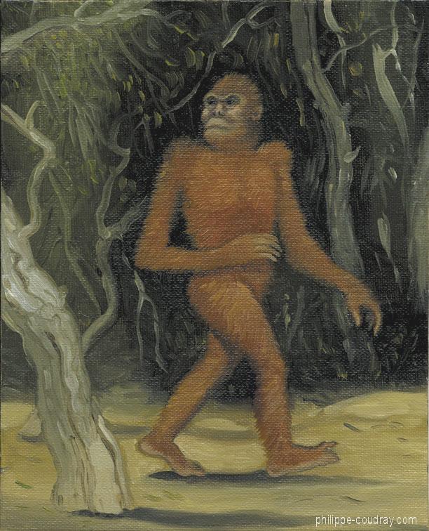 Po Orangutan