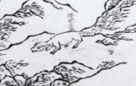 Manman Otter