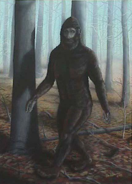 Bigfoot3.jpg