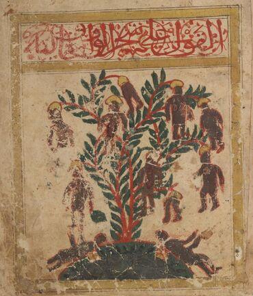 Tree in.jpg