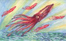 Flying-squid.jpg