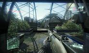 Jackal en Crysis 2