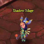 Shadow mage.png