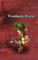 Woodhunter.png