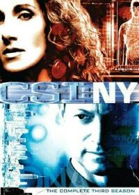 CSI NY Season Three.jpg