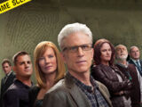Decimocuarta temporada de CSI: Crime Scene Investigation