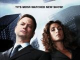 Segunda temporada de CSI: NY