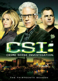 CSI Crime Scene Investigation, Season 13.jpg