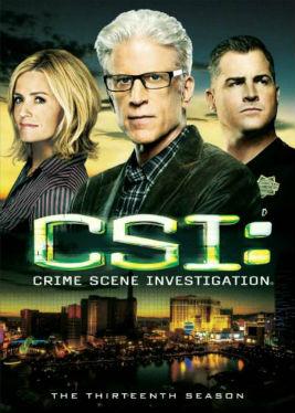 Crime Scene Investigation Season 13