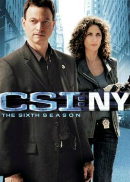 New York Season 6