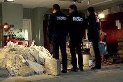 CSI; Crime Scene Invastigation - S14 E14 De Los Muertos (1).jpg