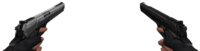 Dualinfinity viewmodel