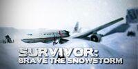 Survivor sg/my poster