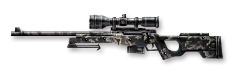AWP Camouflage