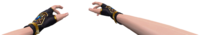 Transchoi hand