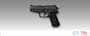 200px-Icon p228.png