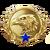 Csgo-rank-level20.png