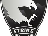 Co-op Strike