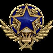 Service medal 2021 lvl3 large