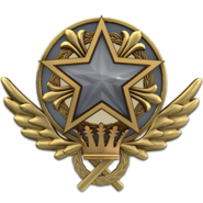 Service medal 2021 lvl1 large