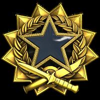 Service medal 2017 lvl7 large
