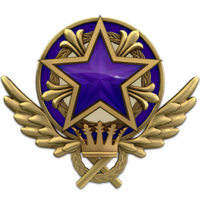 Service medal 2021 lvl4 large