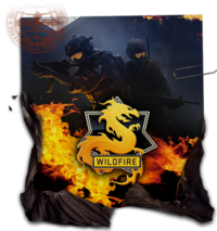 Csgo-opwildfire-journal.png