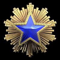 Csgo-service medal 2016 3