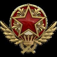 Service medal 2021 lvl6 large